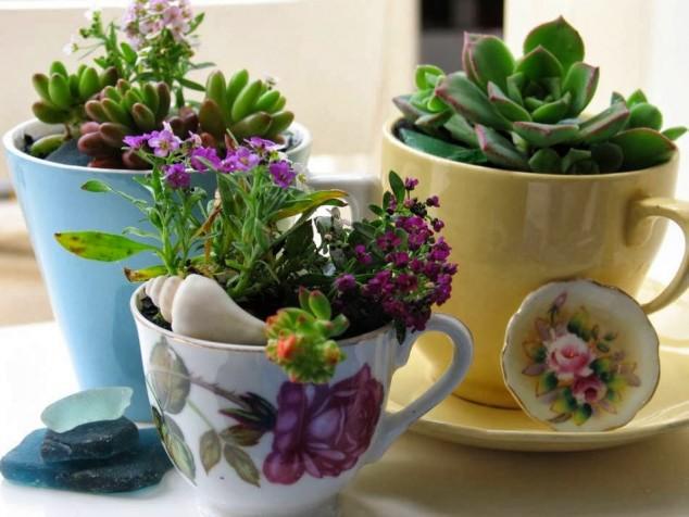 diy home garden ideas 6
