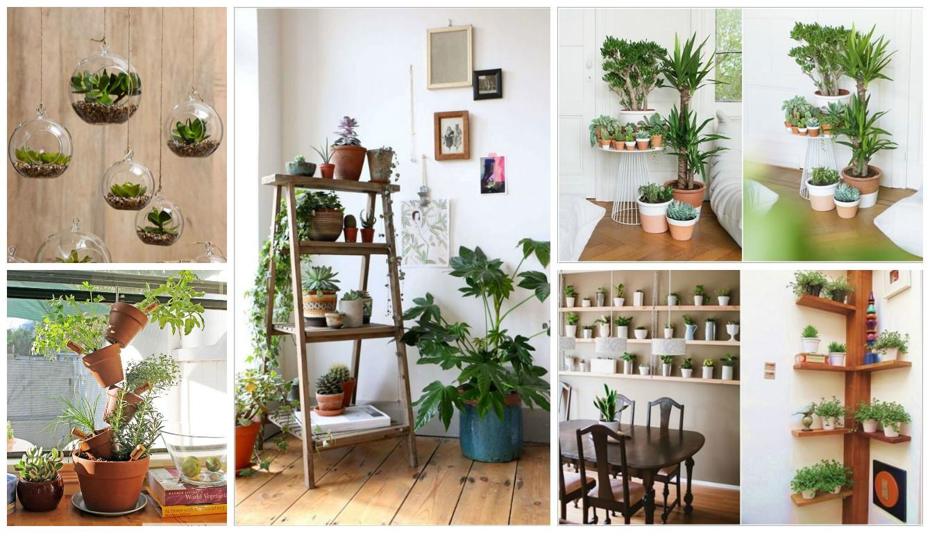 #9D602E Ideias Criativas para Expor as Plantas dentro de sua Casa 1340x768 px plantas para banheiro feng shui
