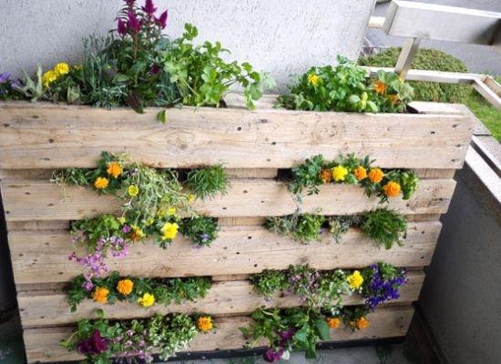 ideias para jardim 10