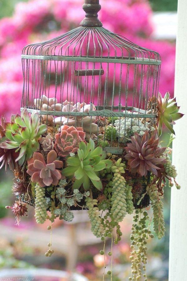 ideias-para-jardim-15