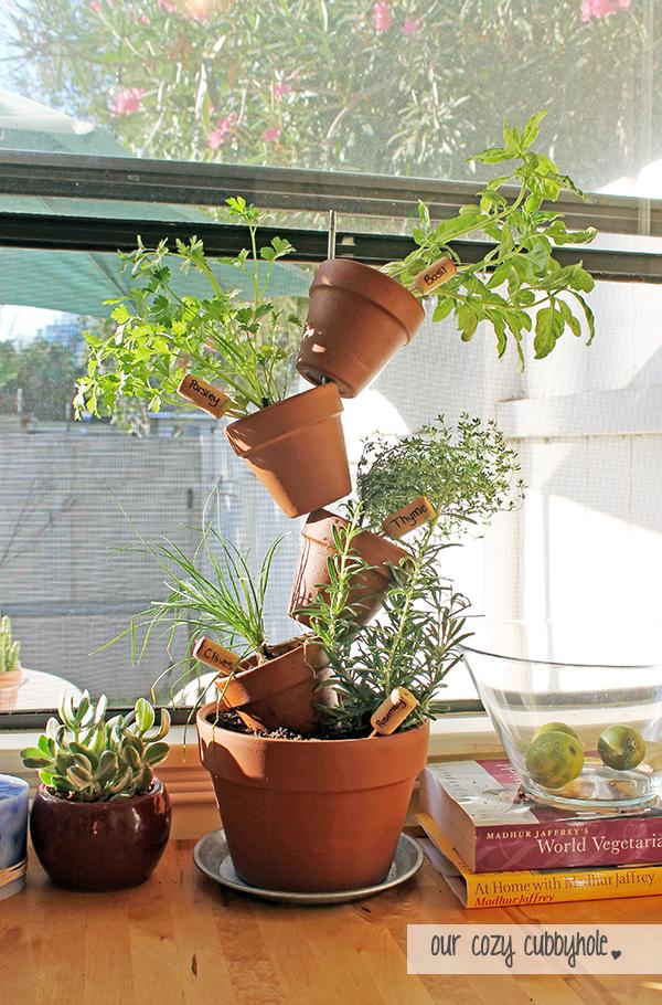 plantas-dentro-de-casa-10