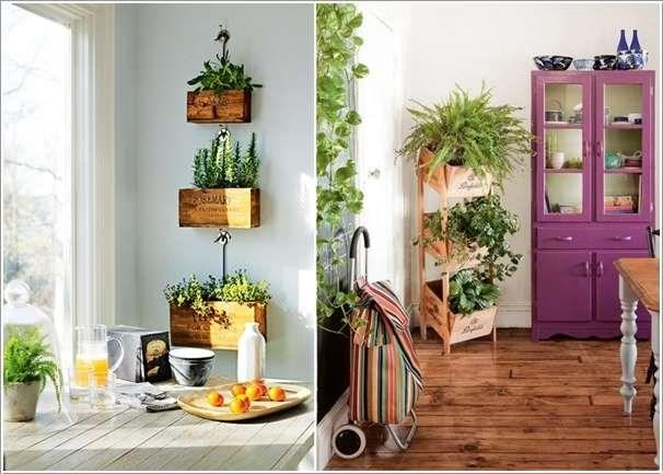 plantas-dentro-de-casa-11