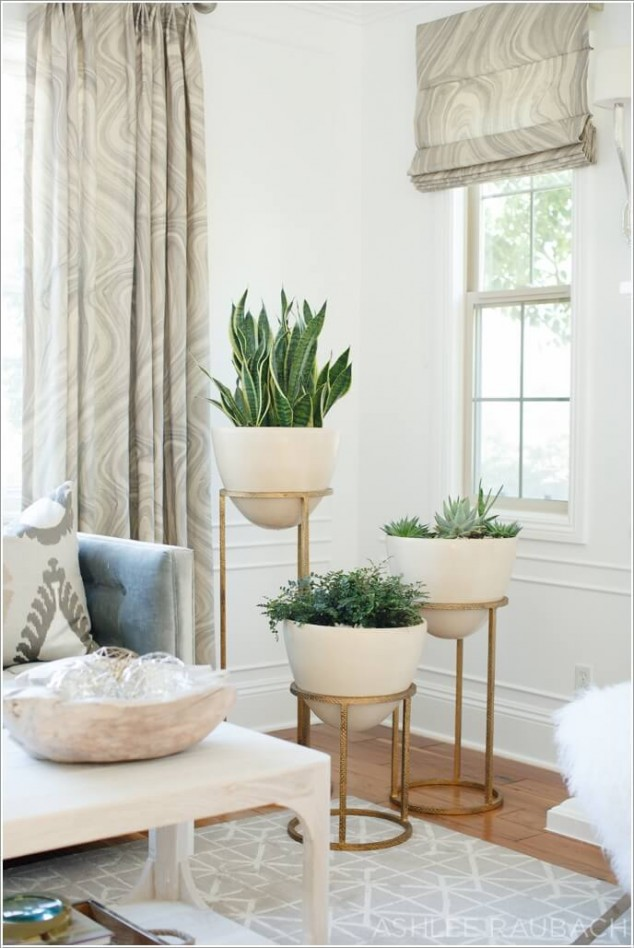 plantas-dentro-de-casa-2