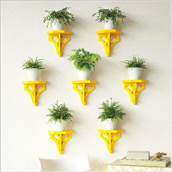 plantas-dentro-de-casa-6