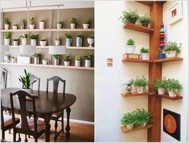 plantas-dentro-de-casa-7