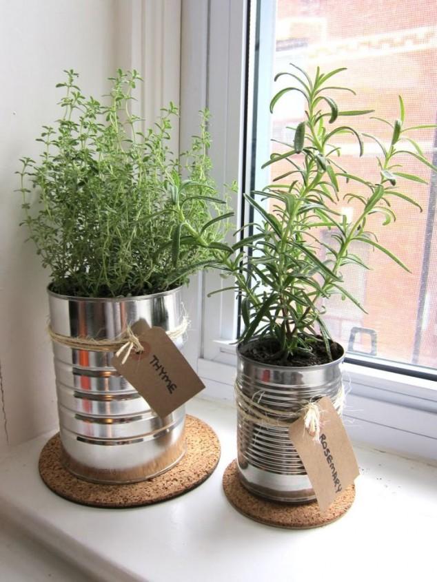 plantas-dentro-de-casa-8