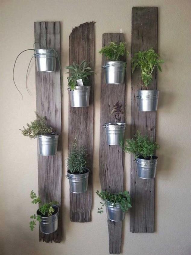 plantas-dentro-de-casa-9